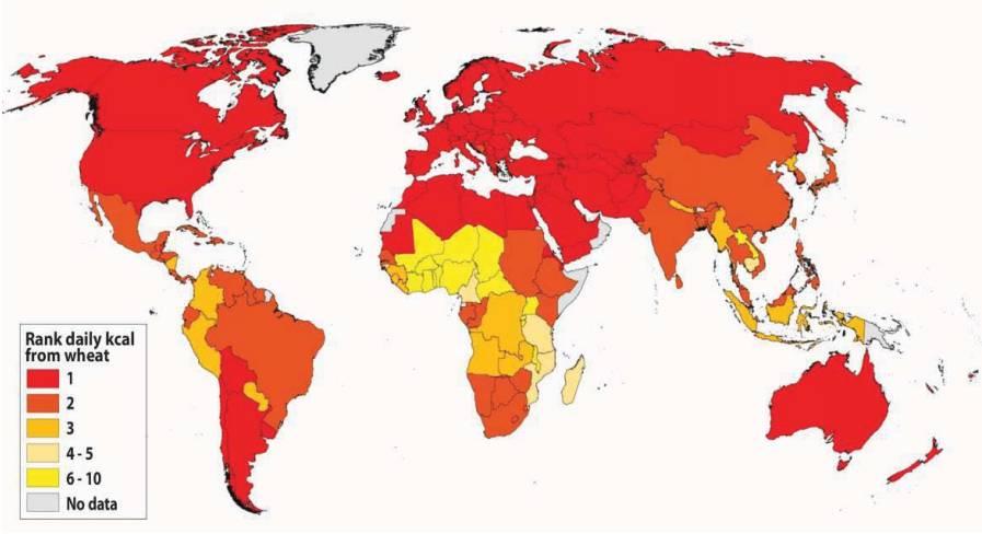 Wheat consumption ranking